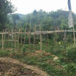 maitri-garden-patharkot